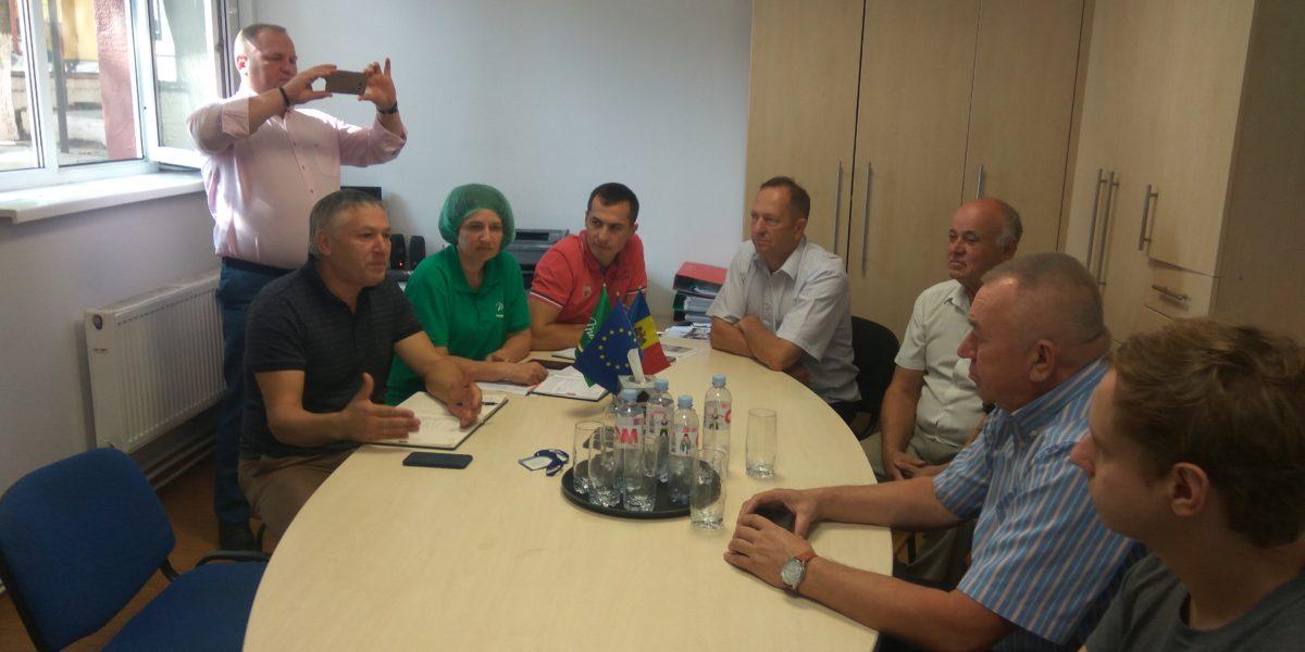 Встреча на фабрике Monicol или несбывшиеся мечты о лидере